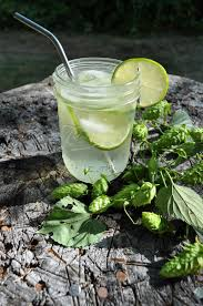 vodka tonic hops infused vodka tonic
