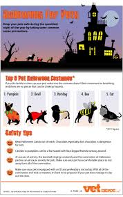 halloween safety tips halloween for pets by vetdepot via tipsographic more at