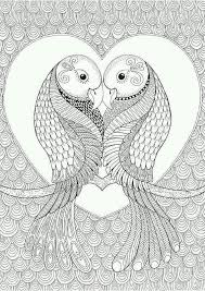 309 best birds patterned colouring pages images on pinterest
