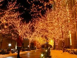 orange christmas lights christmas lights decoration