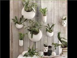 plant wall hangers indoor indoor wall hanging plants indoor house or office plants picture