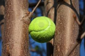 prayer when getting tennis balls out of trees lumunos