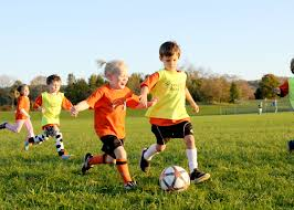 youth sports are destructive to family life caterina net