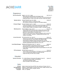 It Technician Resume Examples by The Best Gra 217 Blog Page 15