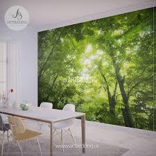 green forest wall mural photo mural sunbeam through green forest