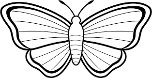 free butterfly clipart black and white clipartxtras