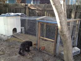 Small Backyard Chicken Coops by Simple Chicken Coop Designs With Easy To Build Backyard Chicken