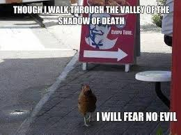Fear Meme - animal memes fear no evil funny memes