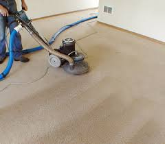 How To Clean The Rug How To Clean The Carpet In New Office Or Apartment Apartments