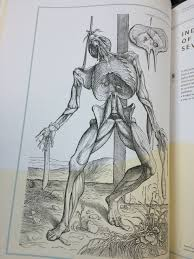 cadaver anthropological perspectives on death