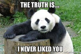 Truth Bear Meme - the truth is i never liked you confession panda make a meme