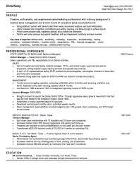 100 professional sales resume format best 25 executive resume