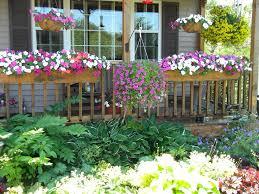 14 best north facing garden images on pinterest flowers