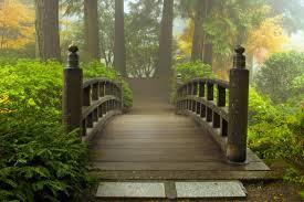 photography background bridgeswooden bridge forest path photography