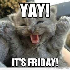 Happy Kitten Meme - 20 happy memes that scream it s friday volume 2 sayingimages com