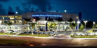 mercedes palm mercedes of palm