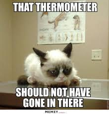 Vet Memes - vet memes funny vet pictures memey com