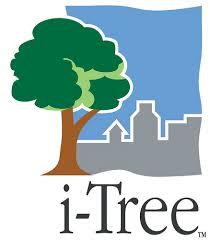 Trees Worldwide Innovative I Tree Spreads Worldwide Usda