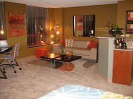 interesting studio apartment color ideas at small decor homedit