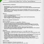 combined resume template combination resume samples writing guide