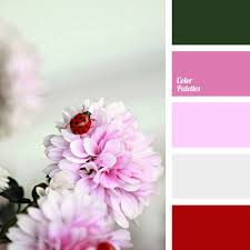 matching colours with pink bright pink colour matching colour matching for home colour of