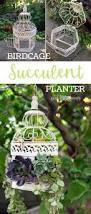 Succulent Planter Best 25 Succulent Planters Ideas On Pinterest O Live Succulent