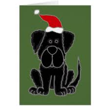 funny newfoundland dog gifts t shirts art posters u0026 other gift