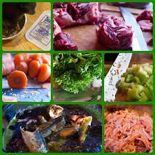 my experience with a raw food diet for dogs thedogtrainingsecret com