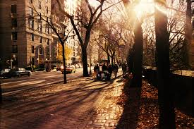 new york city at thanksgiving this is a picture tha flickr