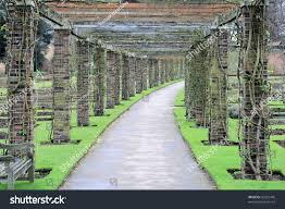 path through garden rose trellis stock photo 50322445 shutterstock