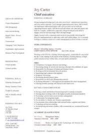 Best Executive Resume Examples Download Executive Resume Examples Haadyaooverbayresort Com