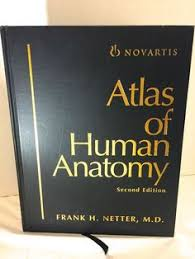 Netter Atlas Of Human Anatomy Pdf Download Bd Chaurasia Human Anatomy Head Neck Brain Upper Limb Thorax