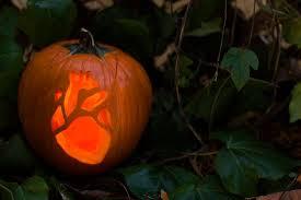 10 brilliant ways to decorate pumpkins this halloween brit co