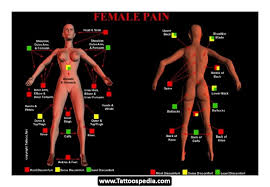 tattoo pain level chart female tattoo pain ink art pinterest tattoo pain ink art and tattoo
