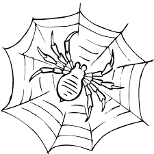 Awesome Spider Web Coloring Page Netart Spider Web Coloring Page
