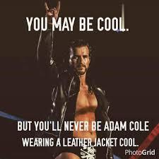 Cole Meme - adam cole adam cole added a new photo facebook