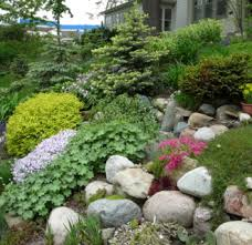 rock small garden ideas 15 cool small rock garden ideas design