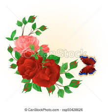 floral frame with roses and butterfly vintage vector eps vector