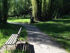 Kyneton Botanical Gardens Kyneton Botanic Gardens Autumn Caspe River Path Ptg