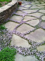 Paving Stone Designs For Patios 25 Stunning Garden Paths Ground Covering Paths And Stone