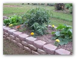 building a raised vegetable garden at home