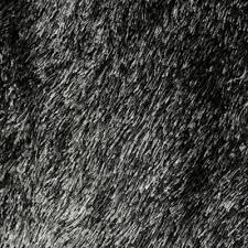 conforama tapis chambre tapis de salon conforama tapis de salon tringle