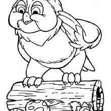 thumper 9 coloring pages hellokids