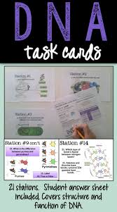 best 25 dna lab ideas on pinterest cell cycle activity