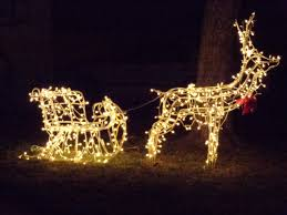 reindeer pulling sleigh lighted decoration dma