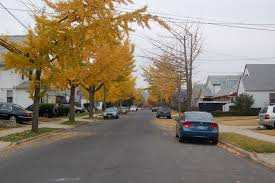 floral park queens leafy suburban feel