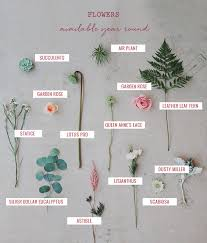 wedding flowers names seasonal flower guide summer
