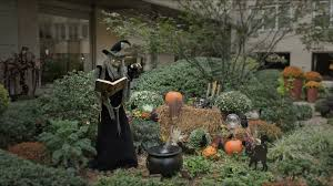 scary witch scene with open book of evil spells and pumpkins in