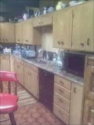 Non Toxic Kitchen Cabinets Kitchen Spraying Kitchen Cabinets Oak Wood Kitchen Cabinets