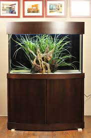 custom aquarium stands fish gallery